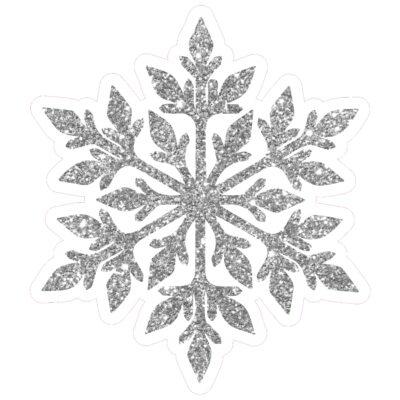 18 Snowflake5 SilverWEB