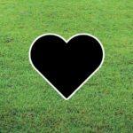 Symbols Category Header Image Heart