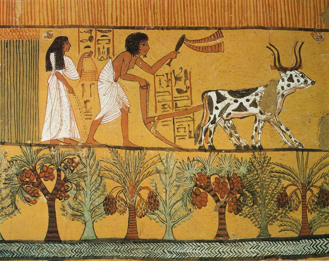 Sowing and Plowing in the Fields. Egyptian wall painting.