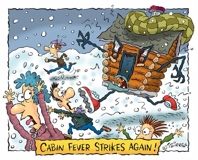 Cabin Fever Strikes Again Terry Sirrell 5306982