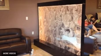 Custom Bubble Wall Panel Indoor with Bubbles