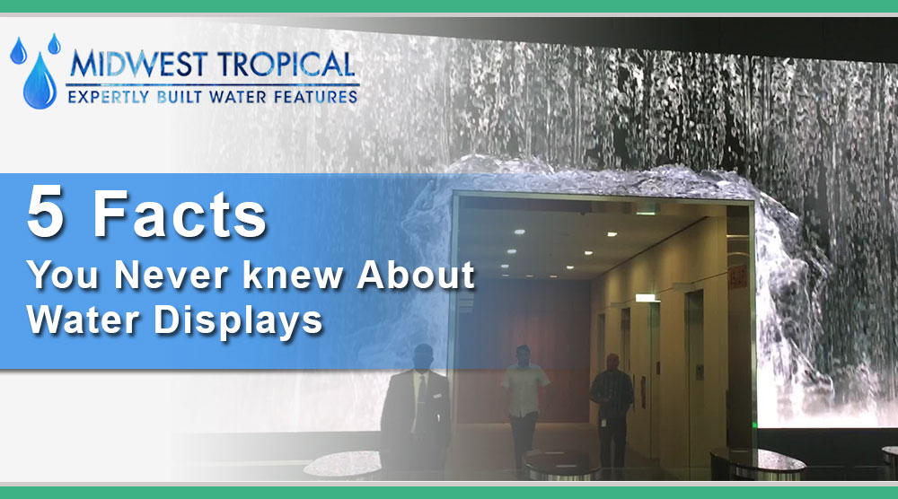 5 Facts you never knew about Water Displays