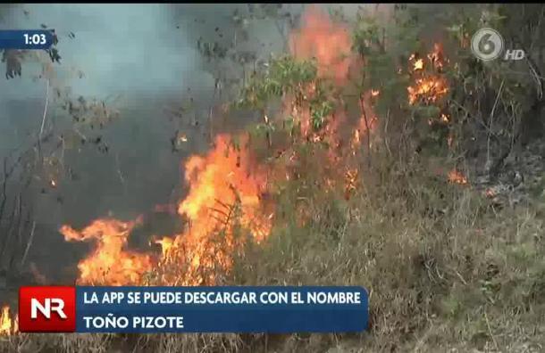 Aplicación pretende contrarrestar incendios forestales